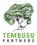 Tembusupartners.com